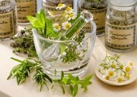 Лекарственное растительное сырье (трава, листья, почки, цветки, плоды, семена, ягоды, корни, корневища) и сборы